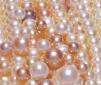 perle01
